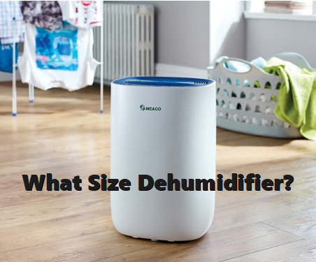 What Size Dehumidifier?