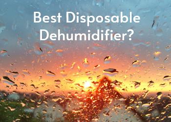 Best Disposable Dehumidifier_