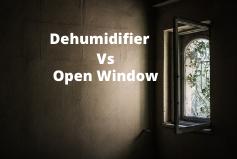 Dehumidifier vs open window