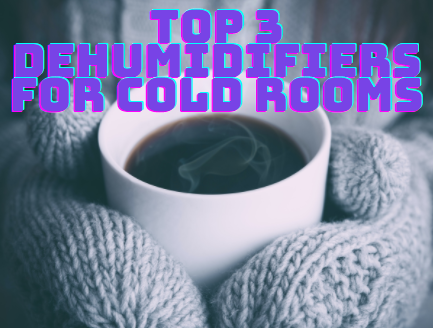 Top 3 dehumidifiers cold room